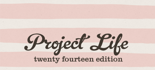 My Project Life Process for 2014